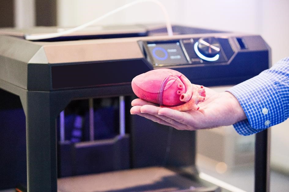 3D-geprint hart. (additive manufacturing)