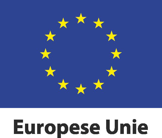 Vlak europese unie